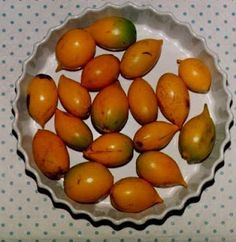 abiu fruit - Brazil