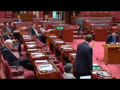 Hit by a brick: The Senate Inquiry into Newman Govt Brick, The Unit, Bricks