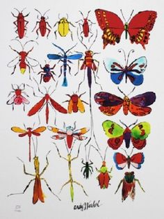 Andy Warhol - BUTTERFLIES -  Lithographie - limitierte