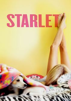 "Starlet -- ""Jane, a 21-year-old slacker, finds $10,000 stashed in a thermos she buys at a garage sale. Unsure what to do with the money, she begins spending time with Sadie, the elderly widow who held the garage sale. Note: this film contains explicit content."""