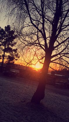 Sunset during winter ☀️❄