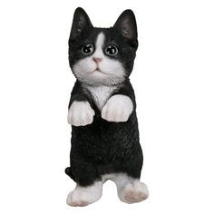 Natures Gallery Hanging Black and White Kitten Statue - 83606