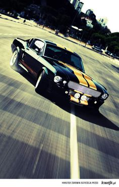 So damn FINE! Follow eBay's sensational 'Dream Cars' board on Pinterest today: www.pinterest.com/ebay/dream-cars/ #Mustang #AmericanMuscle