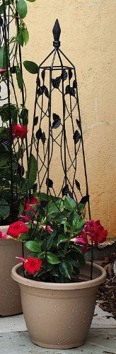 """Black Leaves Trellis - Small by Outdoor Decor. $24.99. 6"""" L x 6"""" W x 36"""" H. From the Trellis Collection.. Perfect for every garden!. Great for yourself or as a gift!. Made of metal.. Perfect for enthusiasts looking to spice things up, this trellis is a nice addition to almost any garden. Place this decorative trellis anywhere in your garden just for looks or plant a rose bush underneath and watch the rose vines climb through the intricate metal working! Purchase one today!"""
