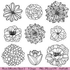 Cool flower drawings.