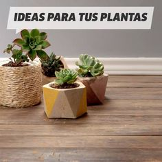 Clever Ceramic Pottery Painting Ideas to Inspire Your Next Project – Succulent pots diy Diy Cement Planters, Diy Wall Planter, Concrete Crafts, Concrete Pots, Diy Crafts For Home Decor, Diy Crafts Hacks, Diys, House Plants Decor, Plant Decor