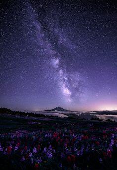 #landscape #mountain #flower #sky #stars #galaxy