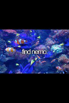 1. Have e pet fish named nemo