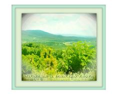 Nature is a Beautiful Thing  One of a Kind Print by WhiteLyme, $15.00