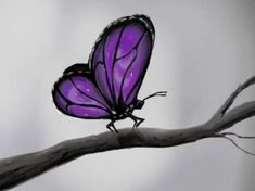 used corel painter to do this Butterfly Images, Butterfly Drawing, Butterfly Kisses, Purple Butterfly, Butterfly Painting, Butterfly Wings, Purple Love, All Things Purple, Shades Of Purple