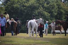 The Greenwich Riding & Trails Association - A Day in the Country Horse Show - September 2015  Greenwich, CT  Milliken Property