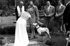 Alana and Simon - Otaki Wedding Photography - Josh Neilson Photography