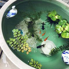 32 Stunning Indoor Pond Design And Decor Ideas Indoor Pond, Indoor Water Garden, Indoor Water Fountains, Pond Fountains, Small Water Gardens, Container Water Gardens, Patio Pond, Ponds Backyard, Aquarium Design