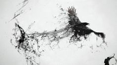 http://www.wallpapers-online.net/wp-content/uploads/2013/01/Crow-raven-flying-smoke-spray-black.jpg