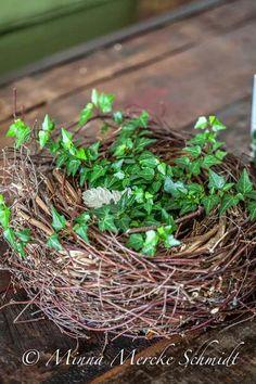 Blomsterverkstad: När man handlar växter...