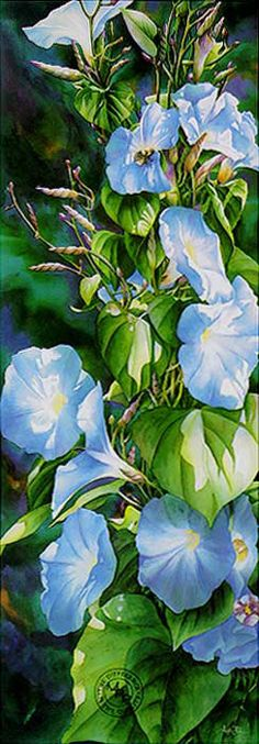 Art of Arleta Pech  - the only flower my father really liked ... morning glories!