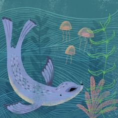 Sea Lion diving & jellyfish illustration by daughter earth.