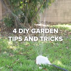 4 DIY Garden Tips And Tricks #garden #hacks #tips #simple #green #plants