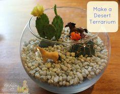 Desert Terrarium DIY #craft from http://www.confessionsofanover-workedmom.com/2013/06/desert-terrarium-diy.html #sponsored