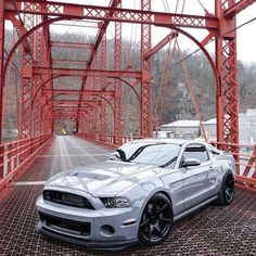 #ford#Mustang#SVT tag–> #American_muscle_mustangs / owner @glennyboyyyy / talk about clean..