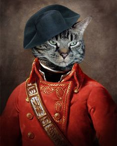 Cat Art - General Animal Photography - Custom Pet Portrait - Canadian Seller - Animal Art - 8x10 Art Print - General Leonard J. Katz