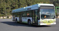 """أول حافلة صديقة للبيئة في إسطنبول بحديقة سطحية   زينت الحافلات ذات الحدائق النباتية على سطحها طرق مدينة إسطنبول يوم الأربعاء ، إذ تساعد حافلات النباتات ،"""" حافلات بوتو"""" على تعادل إنبعاثات الكربون الناتج عن الحافلة وبوجود النباتات التي تمنع من التعرض مباشرة إلى أشعة الشمس الضارة في الصيف إذ تروى النباتات من المياه القادمة من وحدة تكييف الهواء في الحافلات  http://www.portturkey.com/ar/automotive/16435-2014-10-02-14-46-32"""