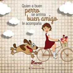 Quien a buen perro se arrima, buen amigo le acompaña #frases #RefranCaninoKucoo