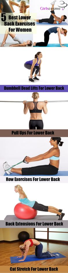 Best Lower Back Exercises For Women - these are helpful, I forgot you could do a row that way, I totally have that equipment.