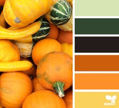 {autumn brights} - https://www.design-seeds.com/seasons/autumn/autumn-brights4