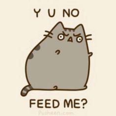 Y U NO FEED ME?