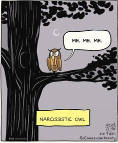 Narcissistic owl.