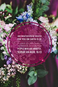 Surah An-Nahl is good to read for children and beginnners in islam in sha Allah, God willing.