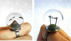 Rings with miniature landscape scenes