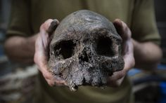A skull forms part of a collection of bones that were found among the stepped footings of Westminster Abbey's south transept in London. The footings were built from Reigate stone between 1246 and1250, during the reign of Henry III, and back filled with charnel material comprising mostly of femurs and skulls from earlier burials.