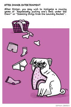 """From """"A Pug's Guide to Etiquette"""" http://www.amazon.co.uk/dp/1909313033"""