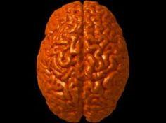 Give Me a Break - Ideas for Brain Breaks