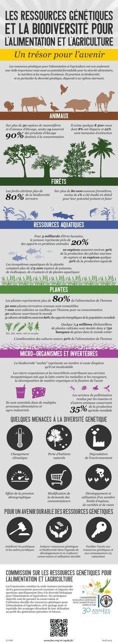 La biodiversité au service de la sécurité alimentaire et de la nutrition: la Commission des ressources génétiques pour l'alimentation et l'a...