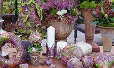 Mosskugeln mit Erika-Zweigen dekoriert