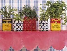 """Résultat de recherche d'images pour """"decoration plante boite en fer"""""""