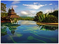 Stunning infinity pool at the Golden Triangle Resort in Chiang Rai, Thailand.