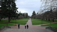 Three Rates You Should Look at When Evaluating Colleges