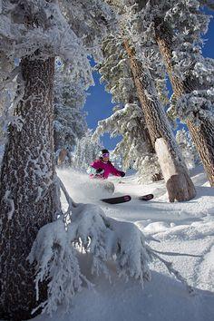 Ski Pass Roundup | Best Ski Deals | SKI Magazine Ski Deals, Ski Magazine, Best Skis, Ski Season, Snow Skiing, Lake Tahoe, Seasons, Travel, Outdoor