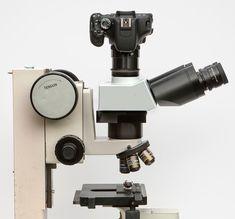 www.photomacrography.net :: View topic - Nikon MM-11