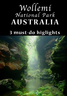 Near the Blue Mountains. Excellent canyoning hikes glow worm caves camping kayaking and more. Glow Worm Cave, Blue Mountains Australia, Australia Travel Guide, Australia Trip, Australian Road Trip, Kayak Camping, Where To Go, That Way, State Parks