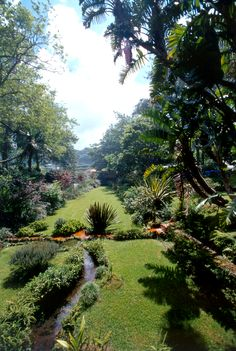 Furnas Valley in São Miguel Island hides one of the most beautiful gardens of Europe.. Is it on your 2015 travel wishlist? :)  www.bensaude.pt/terranostragardenhotel