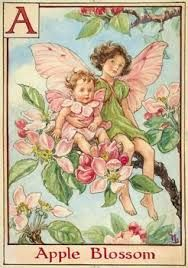 fairies magazine cerca con google