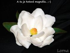 Magnolia tute with patterns for petals Icing Flowers, Gum Paste Flowers, Clay Flowers, Sugar Flowers, Flor Magnolia, Magnolia Flower, Pin Up Hair, Giant Paper Flowers, Flower Template