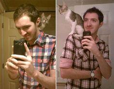 Fotos de animais 'antes e depois' (6)