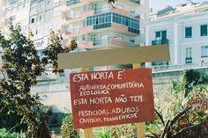 Horta urbana - Graça, lisboa