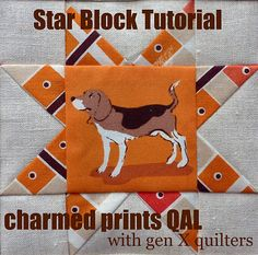 Gen X Quilters - Quilt Inspiration | Quilting Tutorials & Patterns | Connect: Charmed Prints QAL: Star Block